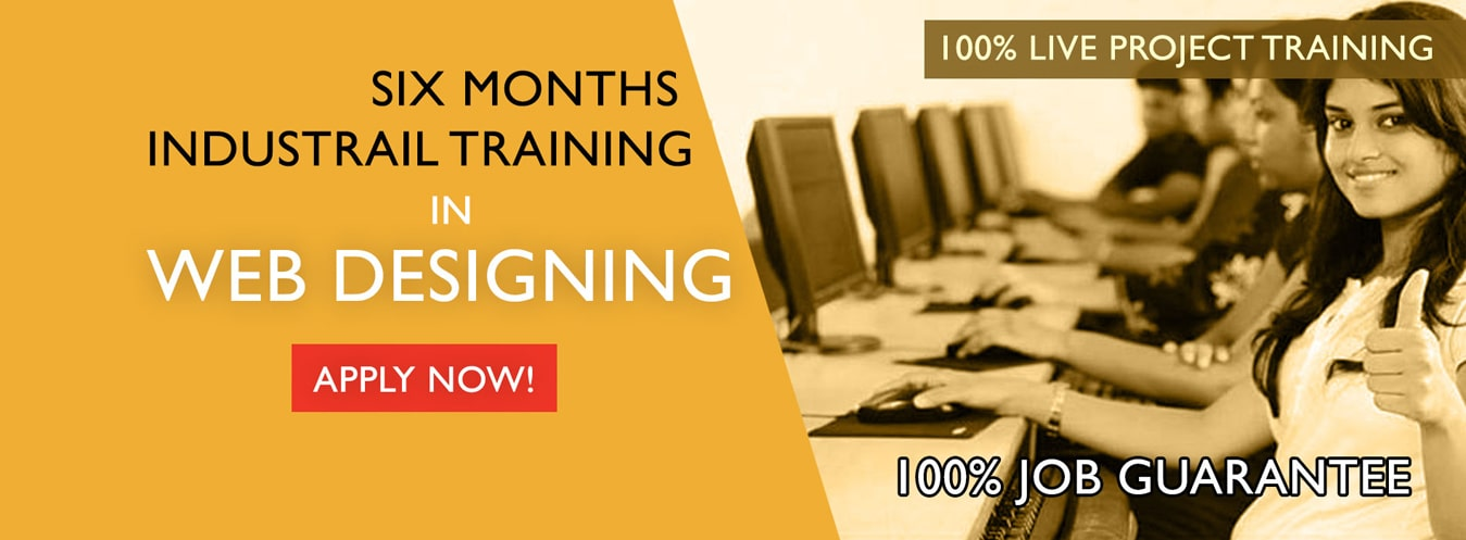 web-designing-industrial-training-in-delhi